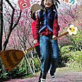 2013.02.11 陽明山春遊