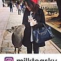 milkteasky