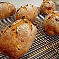 天然酵母養生麵包