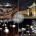 2015LOTTE FITIN+ddp玫瑰花海+光熙門夜景