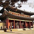 2015 安國站昌德宮(창덕궁)、後苑(후원)