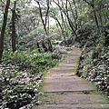 '1302賞花賞月賞美人