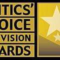 第一屆 美國電視評論家選擇獎