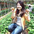 2012內湖採草莓(0316)