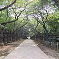 2007 日本東京行 - DAY 2 上野-慕張