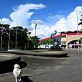 台南●新營體育館bingo比賽