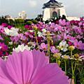 2007-11-25 中正紀念堂