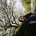 春天的St Andrews