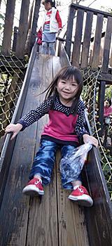 童書裡的森林滑梯