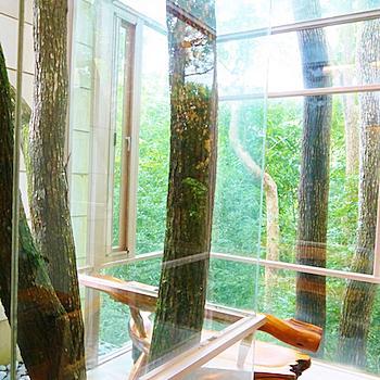 隱身樹林間,與自然共存的體驗!