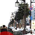 [北海道]:旭川の旭山動物園