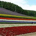 2011.07.30 GOGO北海道