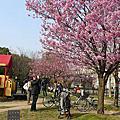 2012.04.08 梅小路公園