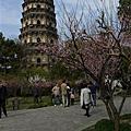 2011.03.13 蘇州虎丘