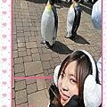 北海道戀人