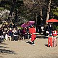 2010/2/20 小石川後樂園~梅祭  &後樂園附近逛逛去