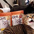 紐西蘭GHR健康主義無穀貓糧 鮮嫩雞肉 放牧羊口味、緩排泄物異味