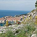 亞德里海的珍珠~Dubrovnik