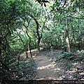 0127林口森林步道