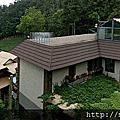 0616阿里山迷糊步道、福山古道