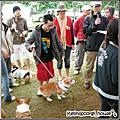 2008 .11月☜2008柯基運動會☞