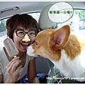 2010。5月花蓮~慕谷慕魚