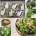 【食‧網購】宅配沙拉。蔬食樂 ~科技農場的無毒生菜