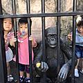 動物園10月2016