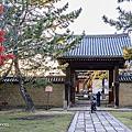 2019奈良楓葉