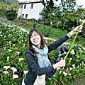台// 2011.04 上山採花去