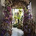 高雄屏東婚紗景點推薦:花藝世界