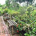 2013.08.31~龍潭 烏樹林花園餐廳