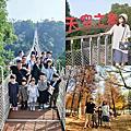 【南投】美不勝收的美景 落羽林森林+猴探井天空之橋 微笑天梯