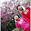 20130203 虎頭山公園