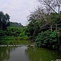 綠谷西拉雅