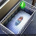 模擬市民3_小BABY