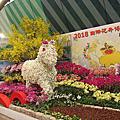 2014台灣國際蘭展