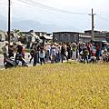 99年佳世達認養割稻活動