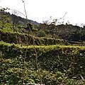 2011/12/23~12/25 移動城堡在 北得拉曼