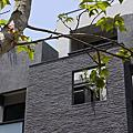墨岩設計。家園樹
