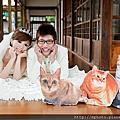 【婚紗拍攝小物】貓咪立牌DIY
