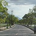 道路獨見-縣道193