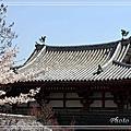 京都文化遺產