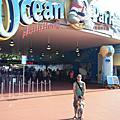 海洋公園 ocean park