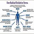 Astaxanthin oxidative stress