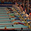 世大運觀賽(游泳)
