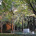 雲南大學.翠湖公園