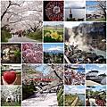 【日本 ● 東北】2017 東北自由行 7 天 6 夜行程總覽 (櫻吹雪)