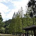 20191013 福山植物園