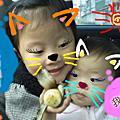 2009年3月<<mica會走囉!! 每天閒逛中>>